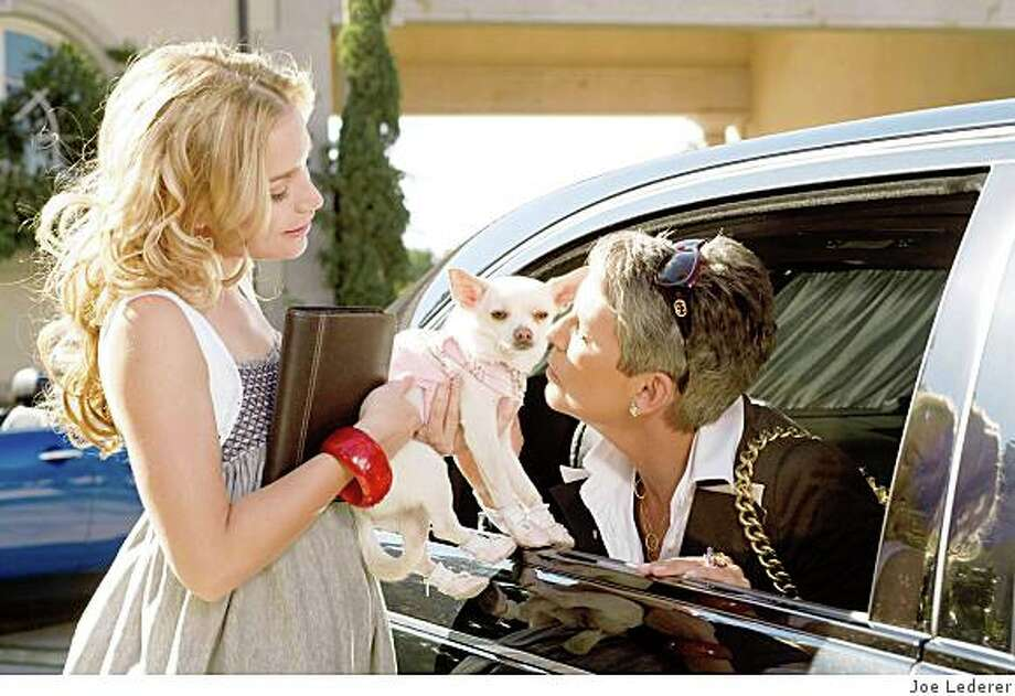 """Piper Perabo (left) and Jamie Lee Curtis (right) star in Walt Disney Pictures' live-action comedy, """"Beverly Hills Chihuahua"""" Photo: Joe Lederer"""