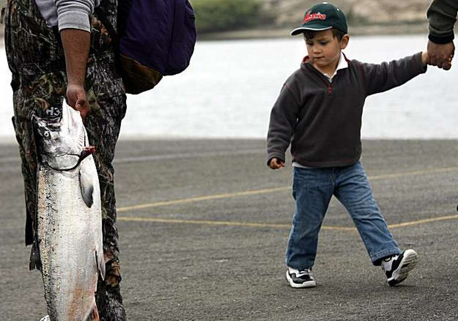 David Torres, 3, checks out salmon as he walks past fisherman on the first day of recreational salmon fishing Saturday in Moss Landing. Photo: Orville Myers, AP