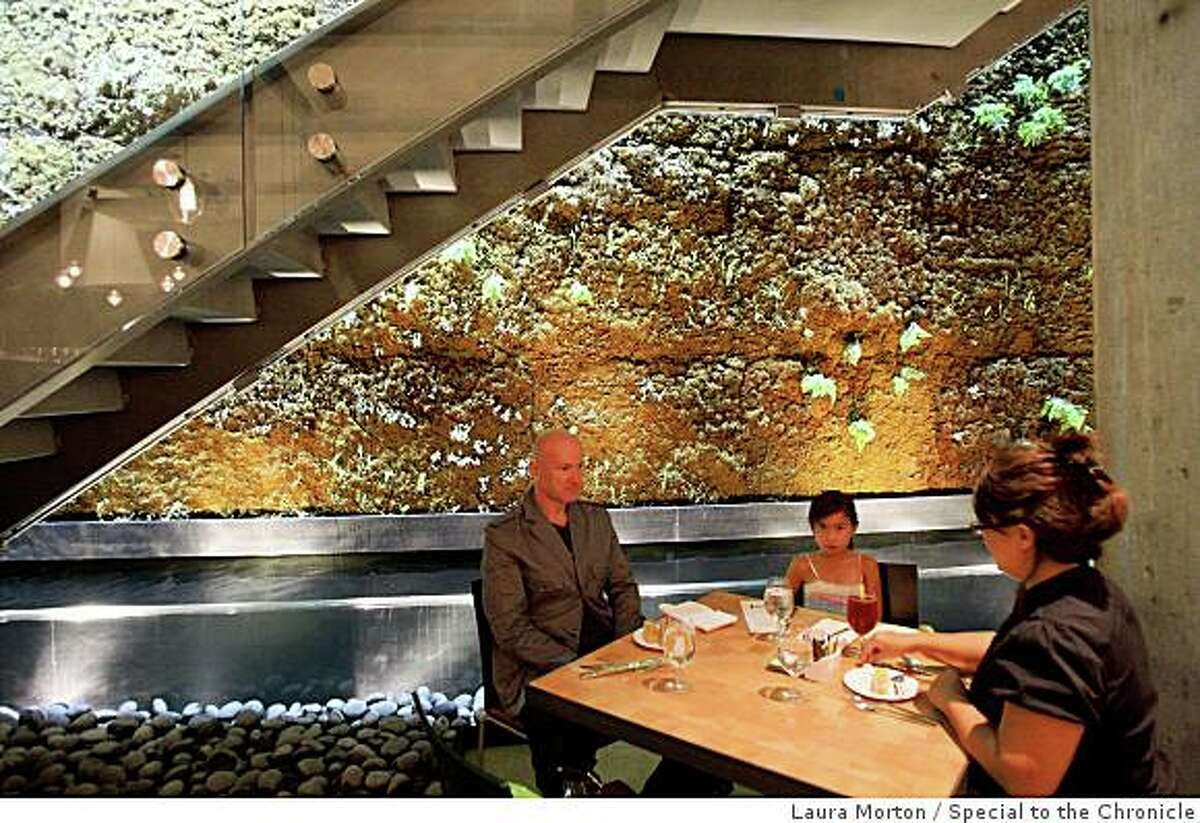Mehmet Turudu, Asfiye Turudu and Heddie Turudu (left to right) dine in the Moss Room, a new restaurant in the California Academy of Sciences, in San Francisco, Calif., on Saturday, September 27, 2006.