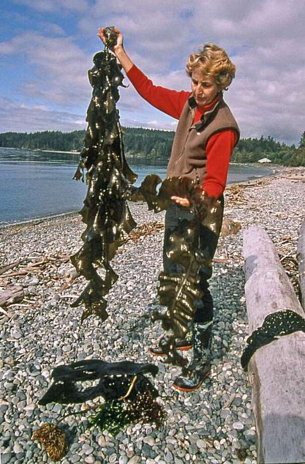 Diane Bernard, often known as the Seaweed Lady. Photo: Margo Pfeiff, Special To The Chronicle