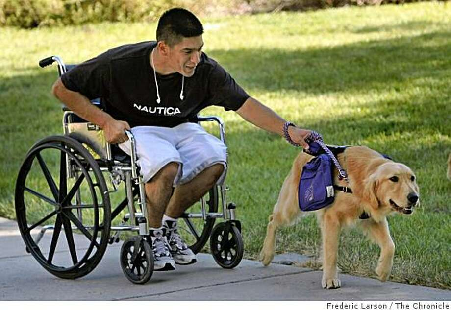 Ryan Briones, a Marine who fought in Iraq, helps train a dog pull a wheelchair at the VA Hospital in Menlo Park, Calif., on September 24, 2008. Briones is involved in a program where the dogs help veterans who might be blind, missing limbs or in a wheelchair. Photo: Frederic Larson, The Chronicle