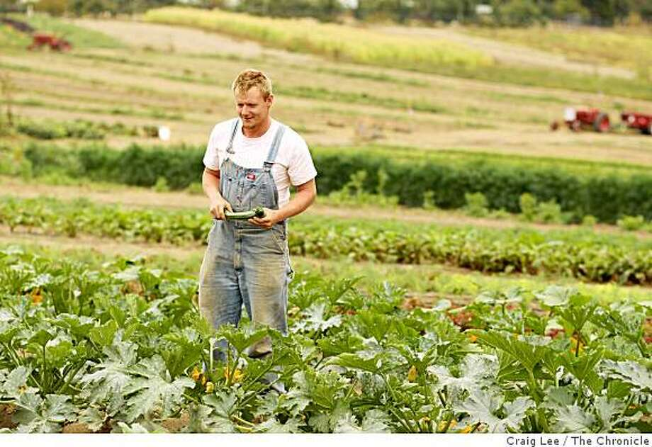Matt McCue, an Iraq War veteran who is now working at the French Garden Farm in Sebastopol, Calif., on September 17, 2008. Matt McCue has been helped by the new Farmer-Veteran Coalition, which helps reteurning soldiers get started in family farming. Photo: Craig Lee, The Chronicle