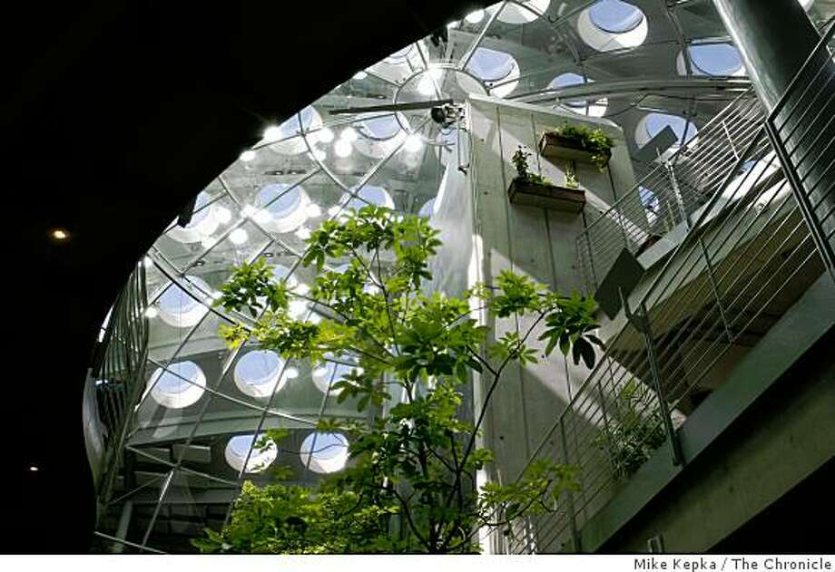 A mixture of sunlight, foliage and architecture come together in the Rainforest of the World Exhibit at the Academy of Sciences on Thursday Sept. 18, 2008 in San Francisco,Calif. Photo: Mike Kepka, The Chronicle