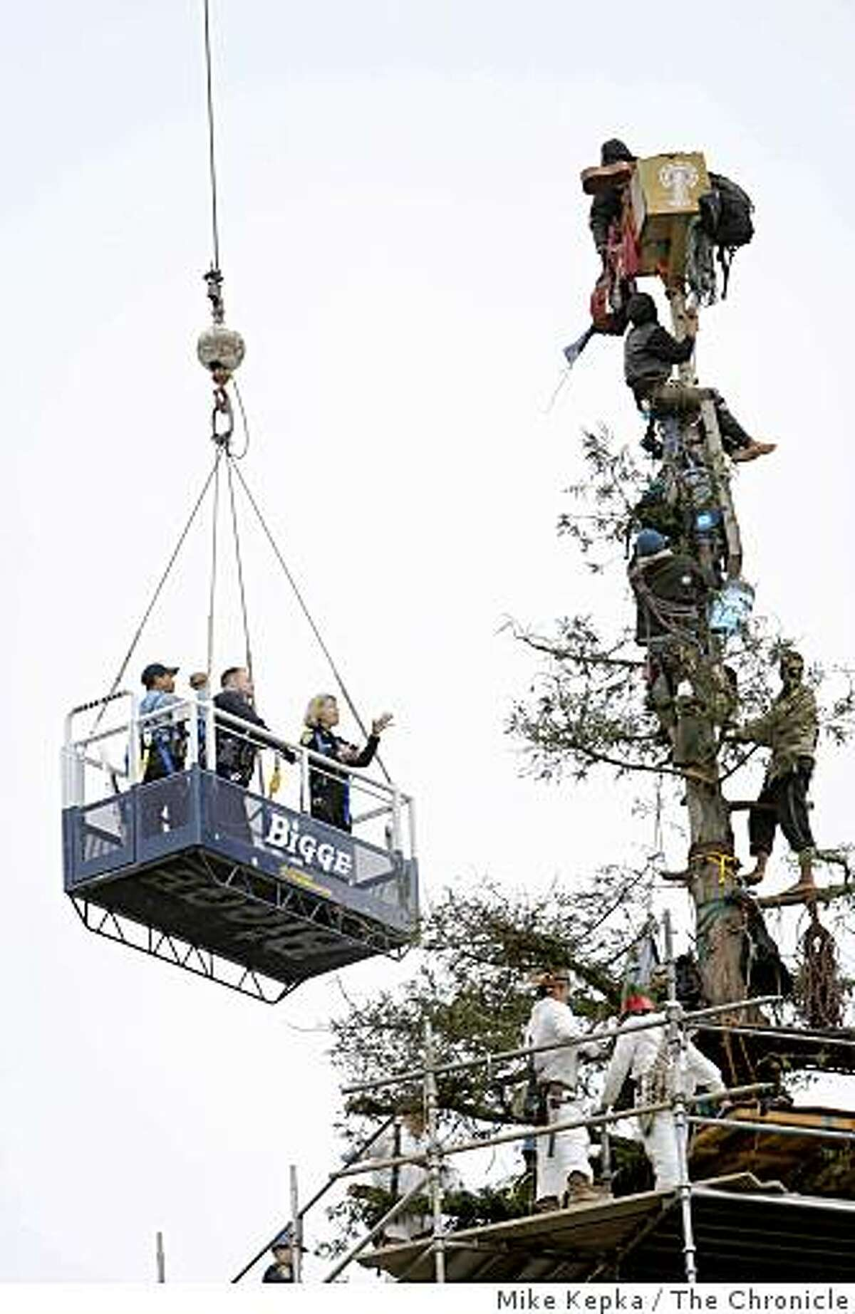 (NYT67) BERKELEY, Calif. -- Sept. 9, 2008 -- CALIF-TREESITTER-STANDOFF -- Authorities negotiate with tree-sitters atop a tree on the campus of the University of California in Berkeley, Calif., Tuesday, Sept. 9, 2008. Four tree-sitters climbed down from the 80-foot-tall redwood tree near Memorial Stadium Tuesday afternoon, bringing a peaceful ending to a nearly 2-year-long standoff that attracted national attention. (Mike Kepka/The San Francisco Chronicle) MANDATORY CREDIT FOR PHOTOG AND SF CHRONICLE/NO SALES-MAGS OUT