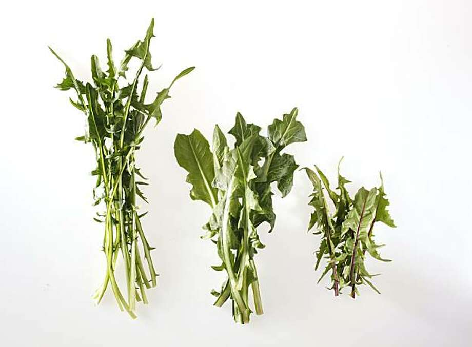Dandelion greens in San Francisco, Calif., on March 17, 2010. Food styled by Pailin Chongchitnant. Photo: Craig Lee