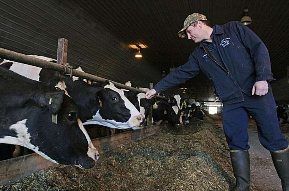 In this photo taken March 9, 2010, Clement Gervais stands near dairy cows at the Gervais Family Farm in Bakersfield, Vt. The farm was among five dairy farm operations targeted in a federal crackdown on undocumented foreign farm workers where Clement Gervais says he believed three of his workers cited as unemployable had proper documentation. Photo: Alden Pellett, AP