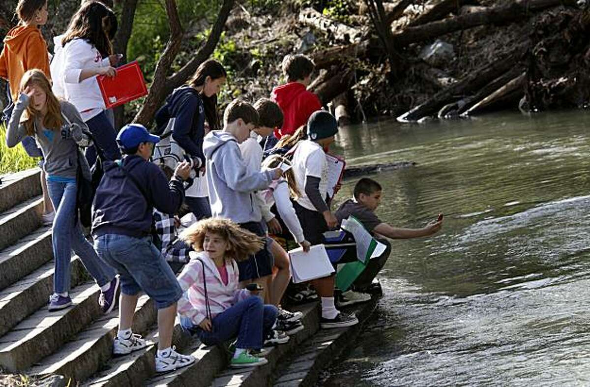 Students from Hidden Valley School in Santa Rosa watch and take pictures Thursday March 18, 2010 of steelhead in a stream created near the hatchery to aid the spawning process. The Warm Springs Hatchery in Geyserville, CA. is working in collaboration with local wineries to improve steelhead and salmon populations in the Russian River and nearby tributaries.