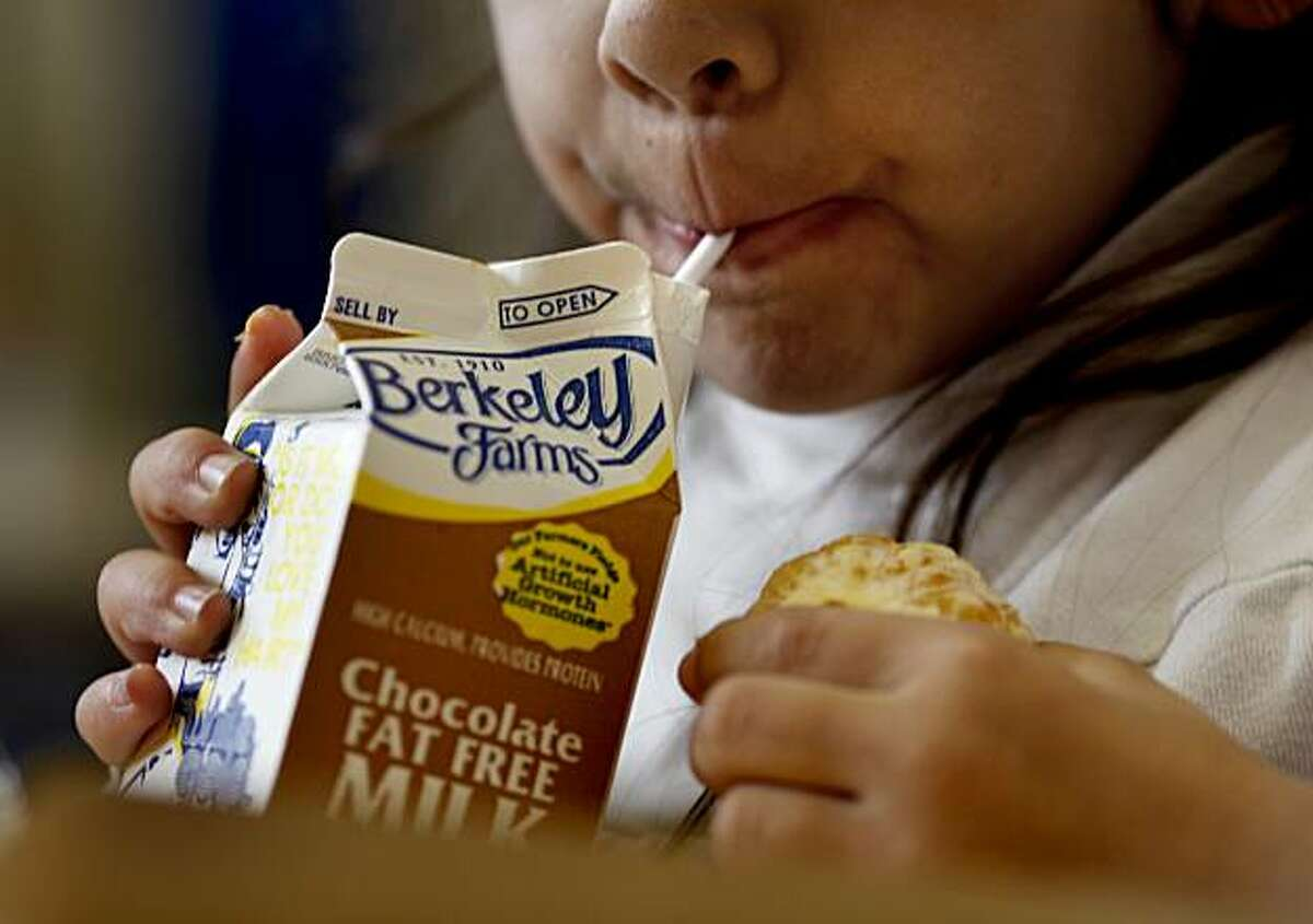 A student at Sanchez Elementary School enjoyed her chocolate milk variety with a cookie at lunch. Berkeley Farms will begin producing chocolate milk for San Francisco and other schools using sucrose instead of high fructose corn syrup beginning February 1. Sanchez Elementary School in San Francisco is one of the schools involved.