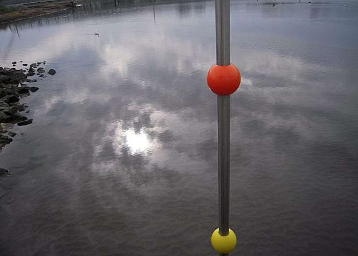 Ruby Ellenby, who is three years, old, took this photo at the lagoon at Crissy Field, using a Nikon Coolpix.