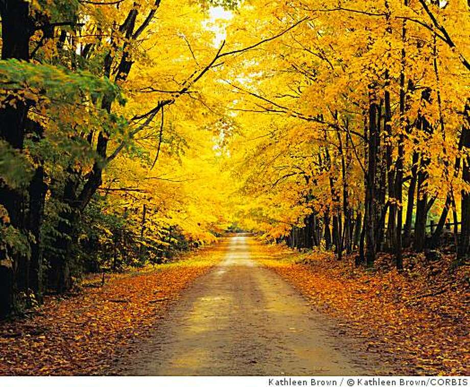 ca. 1995, Vermont, USA --- Autumn Foliage Along a Road --- Image by � Kathleen Brown/CORBIS Photo: Kathleen Brown, � Kathleen Brown/CORBIS