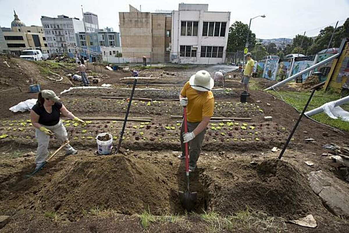 From left, Peta Poole and her partner Jim Sweeney, of Greenbrae, put a lot of elbow grease into their volunteer work preparing a bed for produce at an urban farm at the corner of Gough and Eddy with help from other volunteers inspired by the act of giving in San Francisco, Calif. on Saturday, March 20, 2010. The food will be given away for free. Kat Wade / Special to the Chronicle