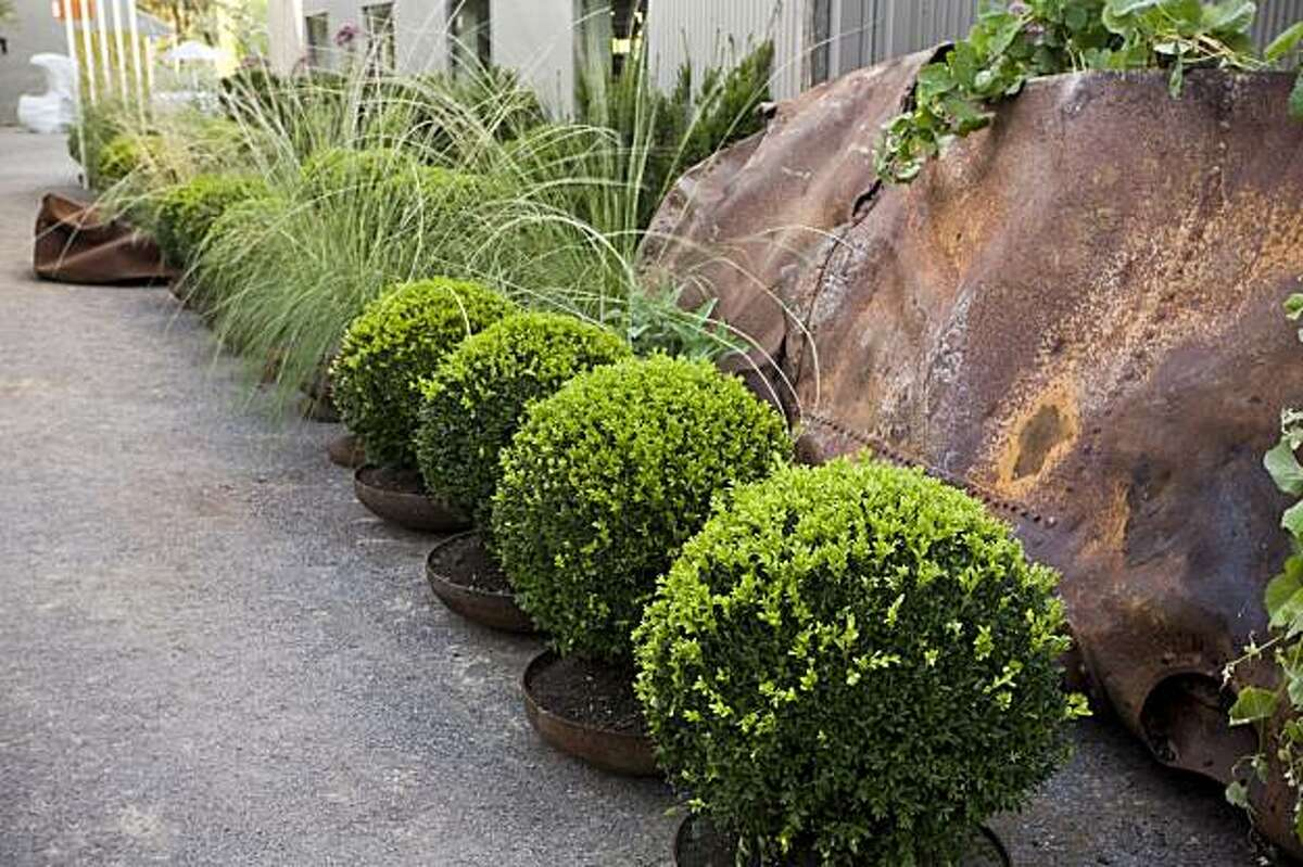 Rusted tanks become planters for boxwoods, vines and and ornamental grass.