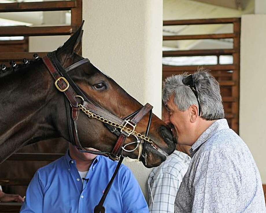 Trainer Steve Asmussen nuzzles Horse of the Year, Rachel Alexandra in the paddock of the Fair Grounds Race Course in New Orleans on  Friday, March 12, 2010. The filly was brought to the paddock for schooling while preparing for Saturday's $200,000 New Orleans Ladies horse race at the Fair Grounds. The talented filly has been installed as the 1-5 favorite in her 2010 debut. Photo: Alexander Barkoff, AP