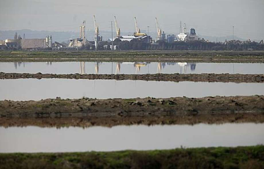 Bay and land meet at the edge of the salt flats on Thursday Feb. 24, 2010 in Redwood City, Calif. which is the proposed location for a Cargill plan to build a 30,000-resident development. Photo: Mike Kepka, The Chronicle