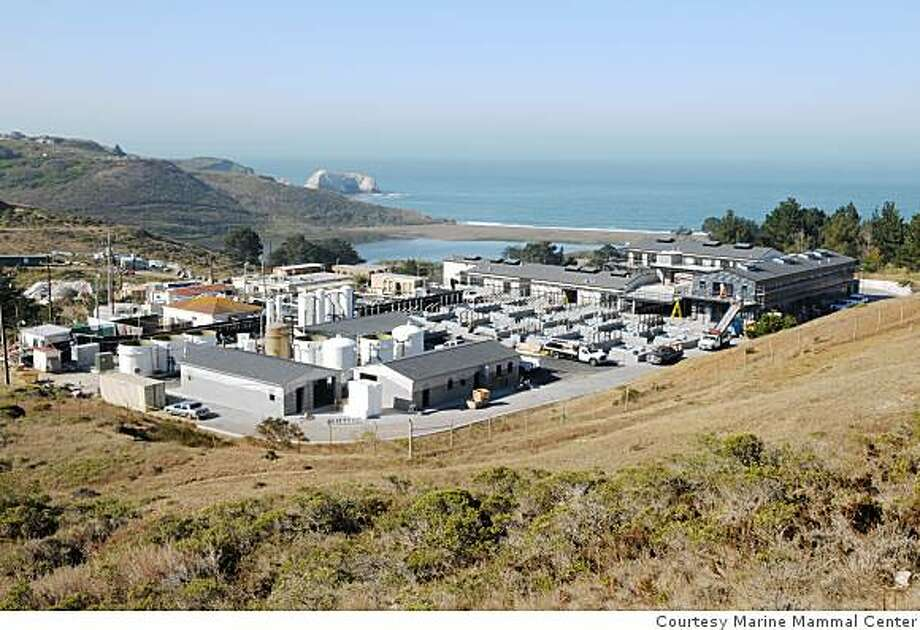 """The new home being built by the Marine Mammal Center includes """"basements"""" that once were underground storage bunkers for Nike missiles. The new center, still under construction, is set to open to the public in June of 2009 Photo: Courtesy Marine Mammal Center"""