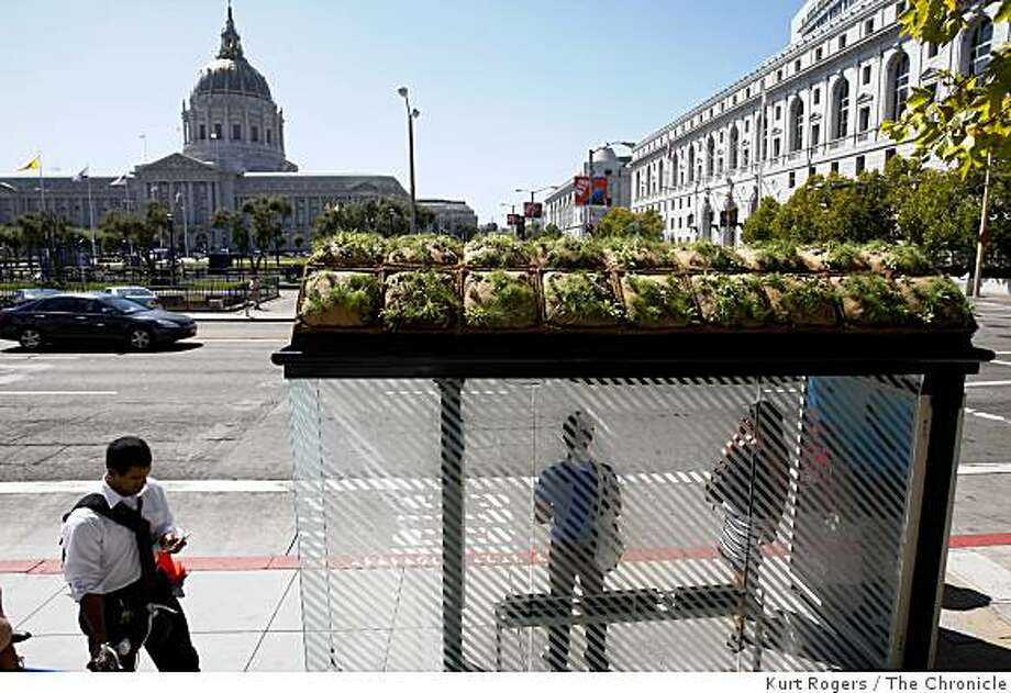 This bus shelter at the corner of Larkin And McAllister is equipped with a new roof that has plants growing on it on Thursday, Sept. 4, 2008 in San Francisco, Calif. Photo: Kurt Rogers, The Chronicle
