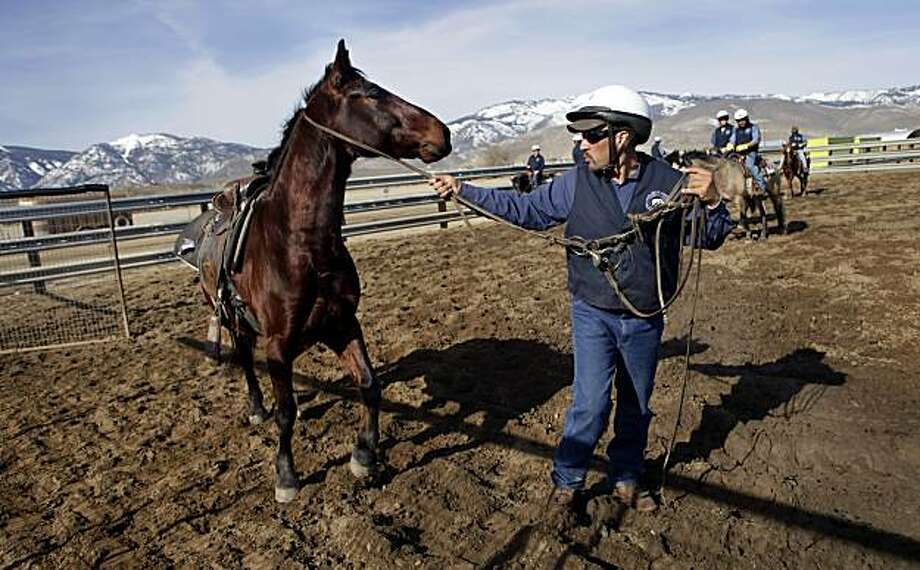 "Juan Carlos Medina, an inmate at the Nevada Department of Corrections, works  with his horse ""Alamo"" Saturday, Feb. 14, 2010, in Carson City, Nevada. Medina gets very close to the horses that he trains and in some cases finds it hard to say goodbye when they are adopted. Photo: Lacy Atkins, The Chronicle"