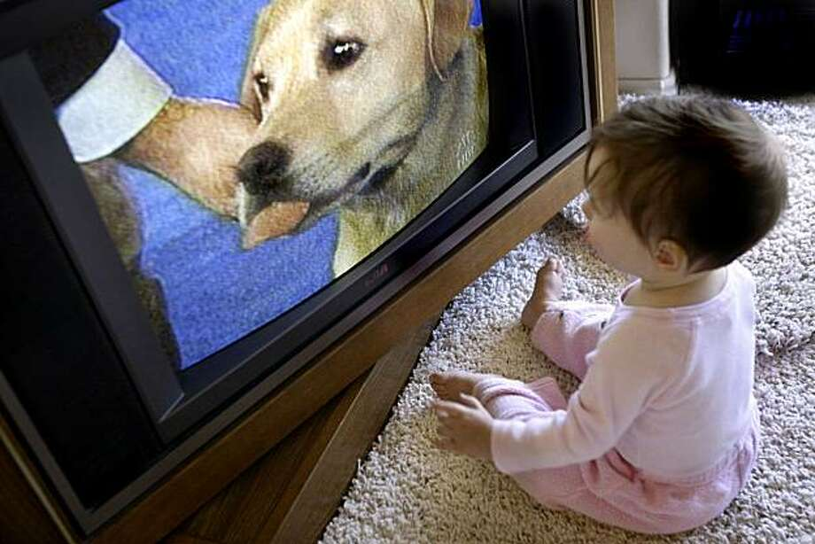 Is it safe for kids to watch TV this close? Why do babies love doggies? Does this little baby understand how the dog show judging works? All questions to ponder - or not. Photo: Scott Sommerdorf, The Chronicle
