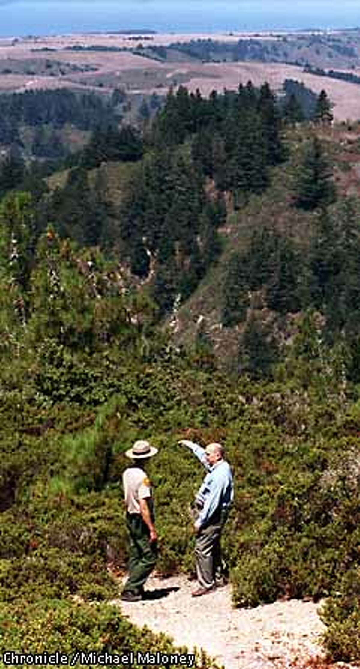 BIG BASIN 1/C/22AUG97/MN/MJM Landowner (right) points out the boundaries of the property the state bought from him to Big basin State Park Ranger Steve Oka. The 41 acre parcel connects the 17,000 acre Big Basin Redwoods State Park with the 3,986 acre Ano Nuevo State Reserve. Photo by Michael Maloney
