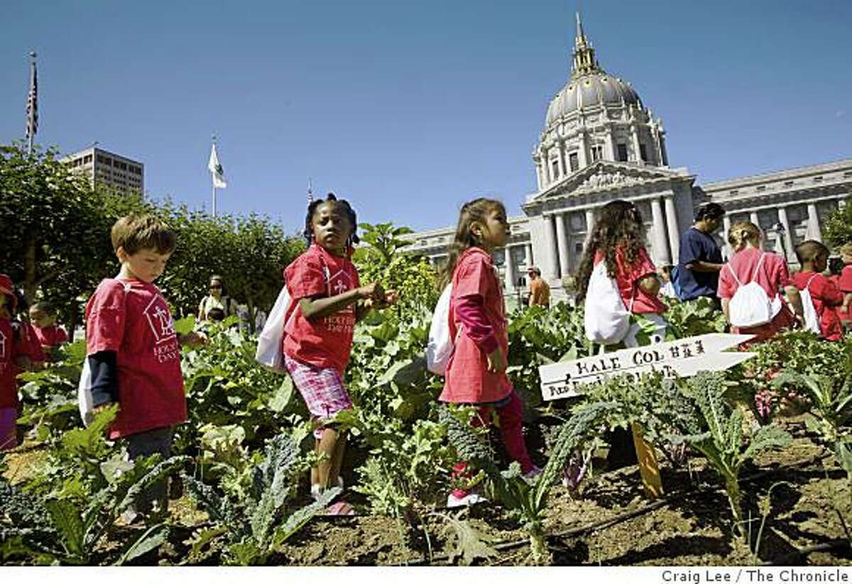 Pre-school kids from Holy Family Day Home touring the Victory Garden at Civic Center Plaza, in San Francisco, Calif., on August 22, 2008.