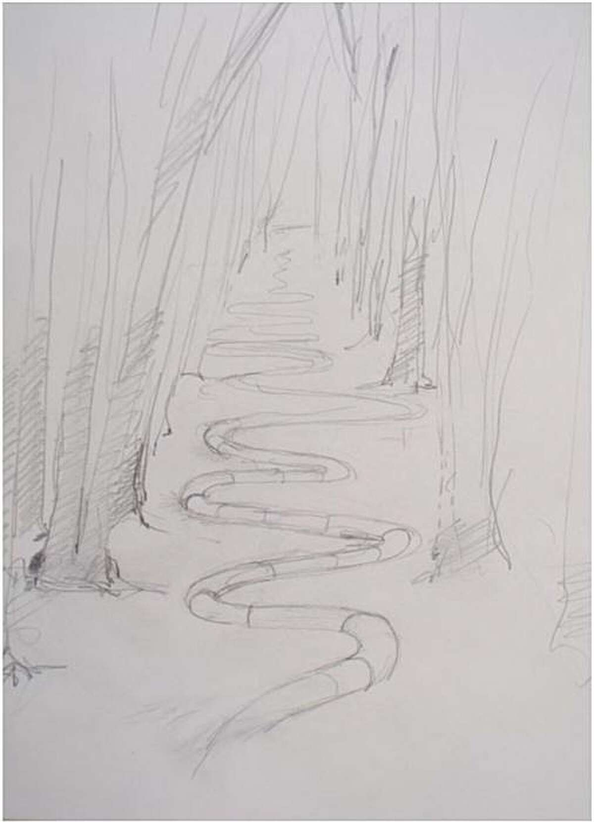 Andy Goldsworthy, a British environmental artist, drew this image for the Presidio Trust to illustrate his conceptual proposal