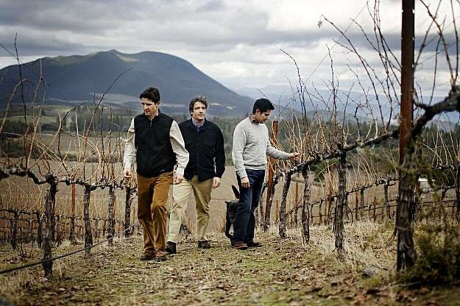 Peter Molnar, center, and his brother Arpad, left, both partners of Tricycle Wine Company and Obsidian Ridge Vineyards, and winemaker Alex Beloz, walk among the 10-year-old cabernet vines in the Red Hill appellation of Kelseyville, Ca. on Tuesday, Feb. 2, 2010. A view of Mt. Konocti looms in the background. Photo: Lianne Milton, Special To The Chronicle