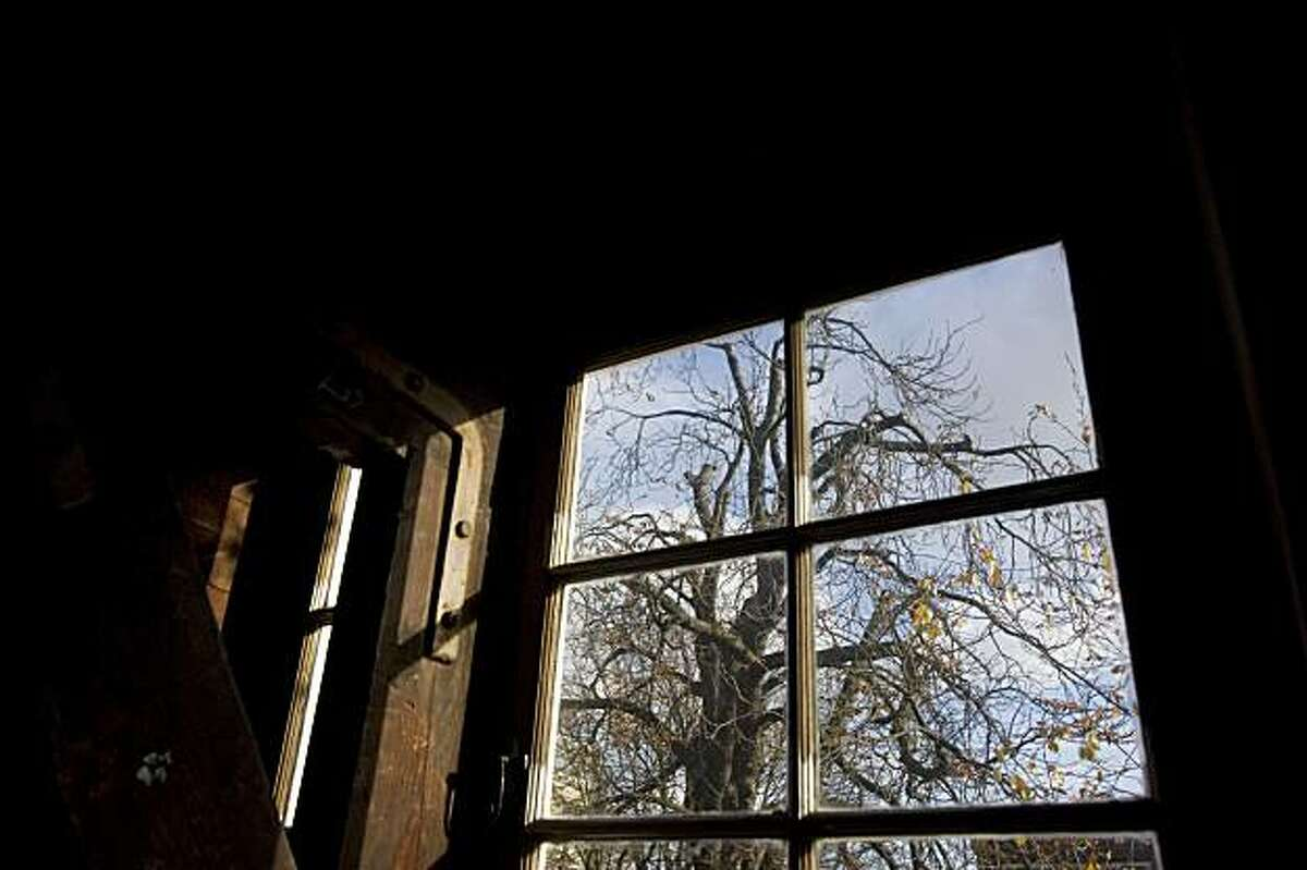 FILE - In this Nov. 14, 2007 file photo is a view of the chestnut tree which Anne Frank said comforted her while she hid from the Nazis during World War II, as seen from the attic window in the secret annex at the Anne Frank House in Amsterdam. Sonoma State University is among 11 U.S. sites which have been selected to receive saplings derived from the chestnut tree that consoled Anne Frank as she hid during Nazi occupation in Amsterdam. The Anne Frank Center USA announced the sites dedicated to fighting intolerance last week. (AP Photo/Peter Dejong, File)