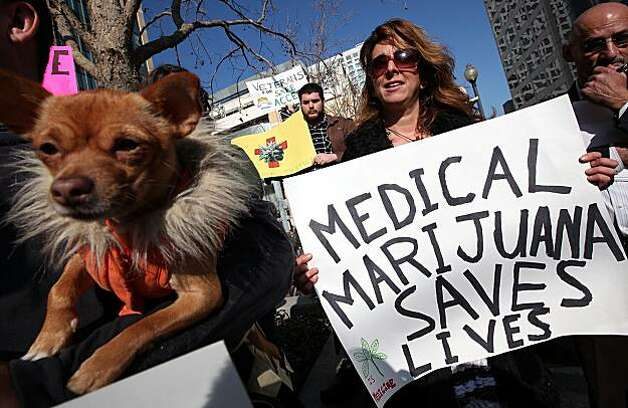 OAKLAND, CA - JANUARY 04:  A medical marijuana activist holds a sign during a rally January 4, 2010 in Oakland, California. Dozens of medical marijuna activists held a demonstration outside of the Ronald V. Dellums federal building in Oakland demnanding medical marijuana reform.  (Photo by Justin Sullivan/Getty Images) Photo: Justin Sullivan, Getty Images