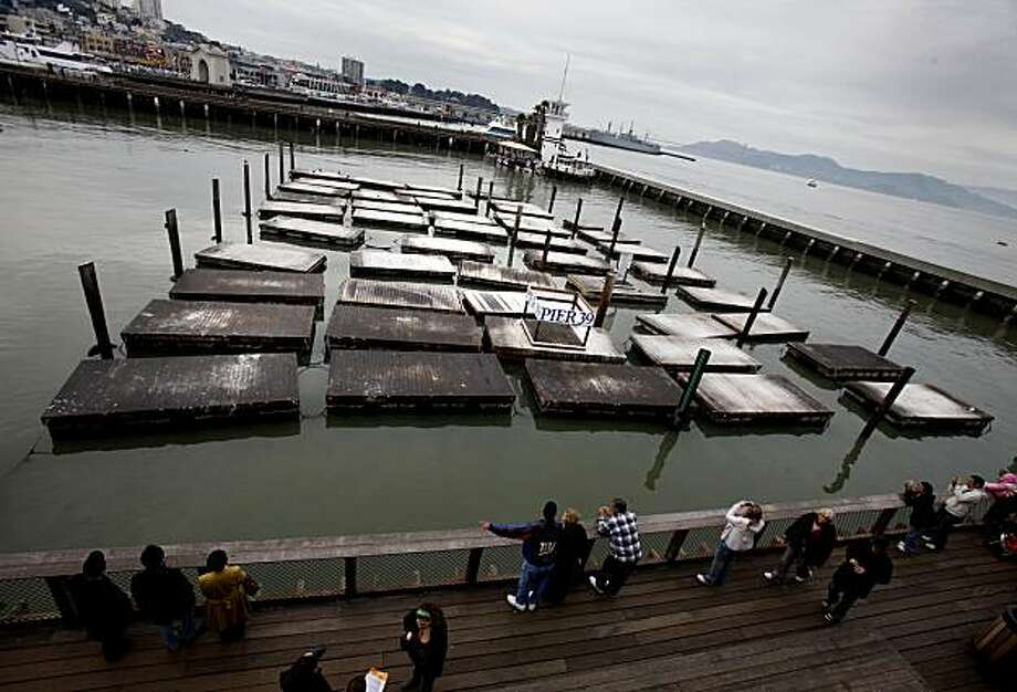 The deserted piers, once covered with sea lions, are now empty. The sea lions have disappeared from Pier 39 in San Francisco, where there once were hundreds on the end K dock, baffling biologists and disappointing tourists. Photo: Brant Ward, The Chronicle