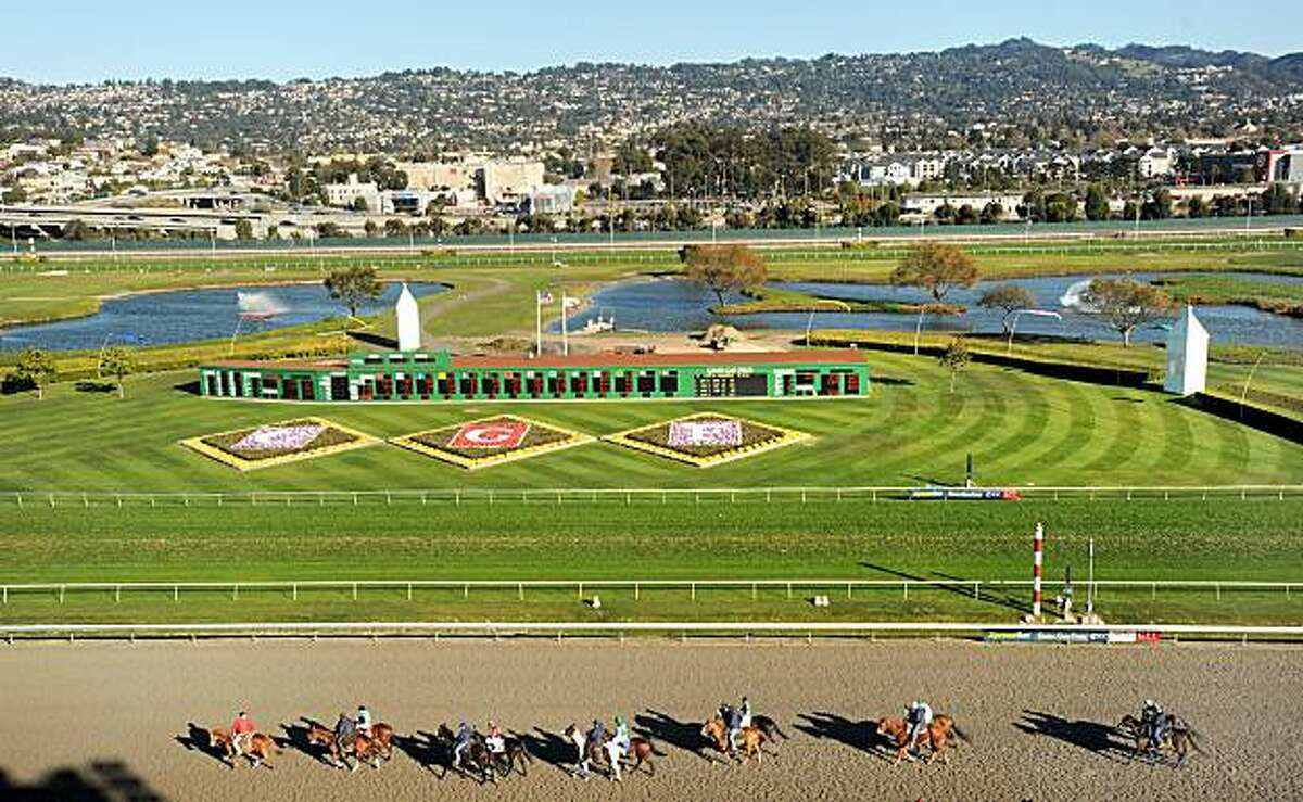 Horses prepare to race at Golden Gate Fields on Saturday, Nov. 28, 2009, in Berkeley, Calif.