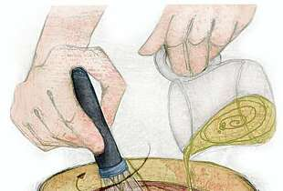 """Vinaigrette illustration for Amanda Gold's """"10 TECHNIQUES EVERY COOK SHOULD KNOW""""Lisa Mertins / Special to the Chronicle"""