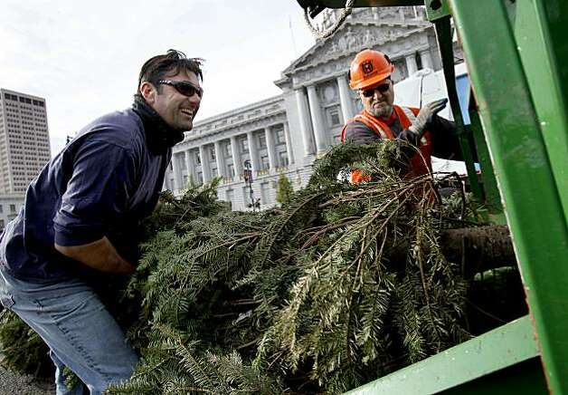 Arborist Matt Saxton (left) put one of the trees to be recycled into the chipper as Abe Rivera watched. The annual Christmas tree chipping celebration was held in front of San Francisco's City Hall Monday December 28, 2009 to call attention to the curbside tree recycling in town. Photo: Brant Ward, The Chronicle