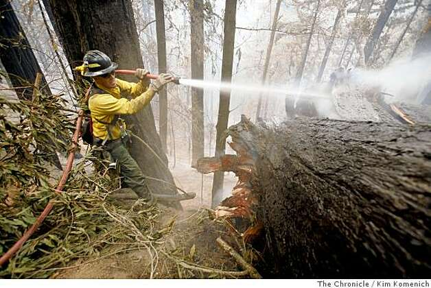 Dan Lang, a firefighter for a private contractor from Minnesota puts water on a smoldering tree on a private road near the Ventana Inn and Spa on Thursday, July 3, 2008 as the Basin Complex fire continues to burn in and around Big Sur, Calif., Photo by Kim Komenich / The Chronicle Photo: Kim Komenich, The Chronicle