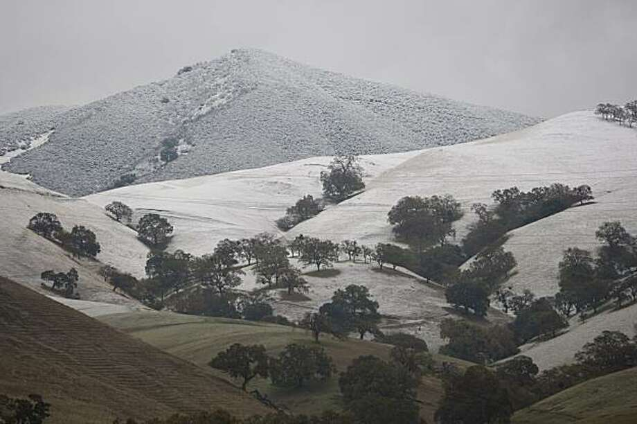 Snow fell in Mt. Diablo State Park on Monday, Dec. 7, 2009. Photo: Adam Lau, The Chronicle