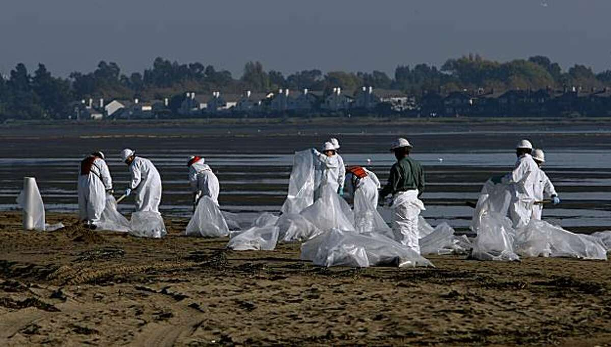 """Hazardous materials personnel scour Crown Memorial Beach in the Alameda, Calif. on Saturday October 31, 2009, picking up tar balls from yesterday's oil spill from the tanker, """"Dubai Star"""" which leaked bunker oil into San Francisco Bay. Crown Memorial Beach remains closed for the clean up."""