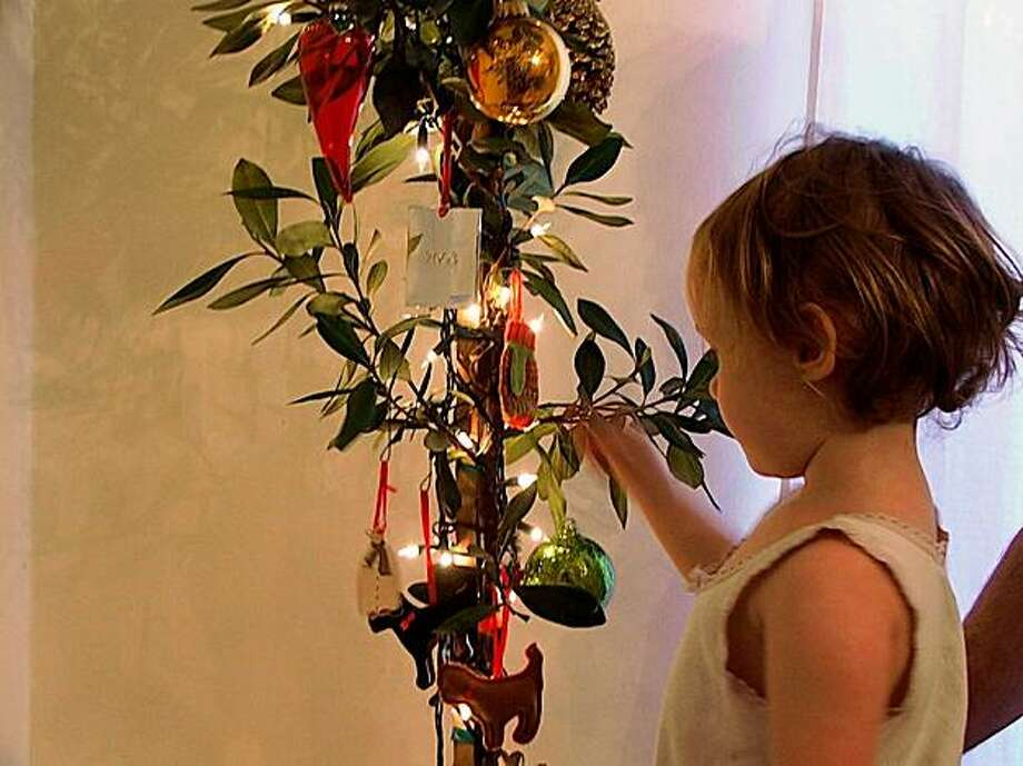 Christmas Trees That Keep Giving Sfgate