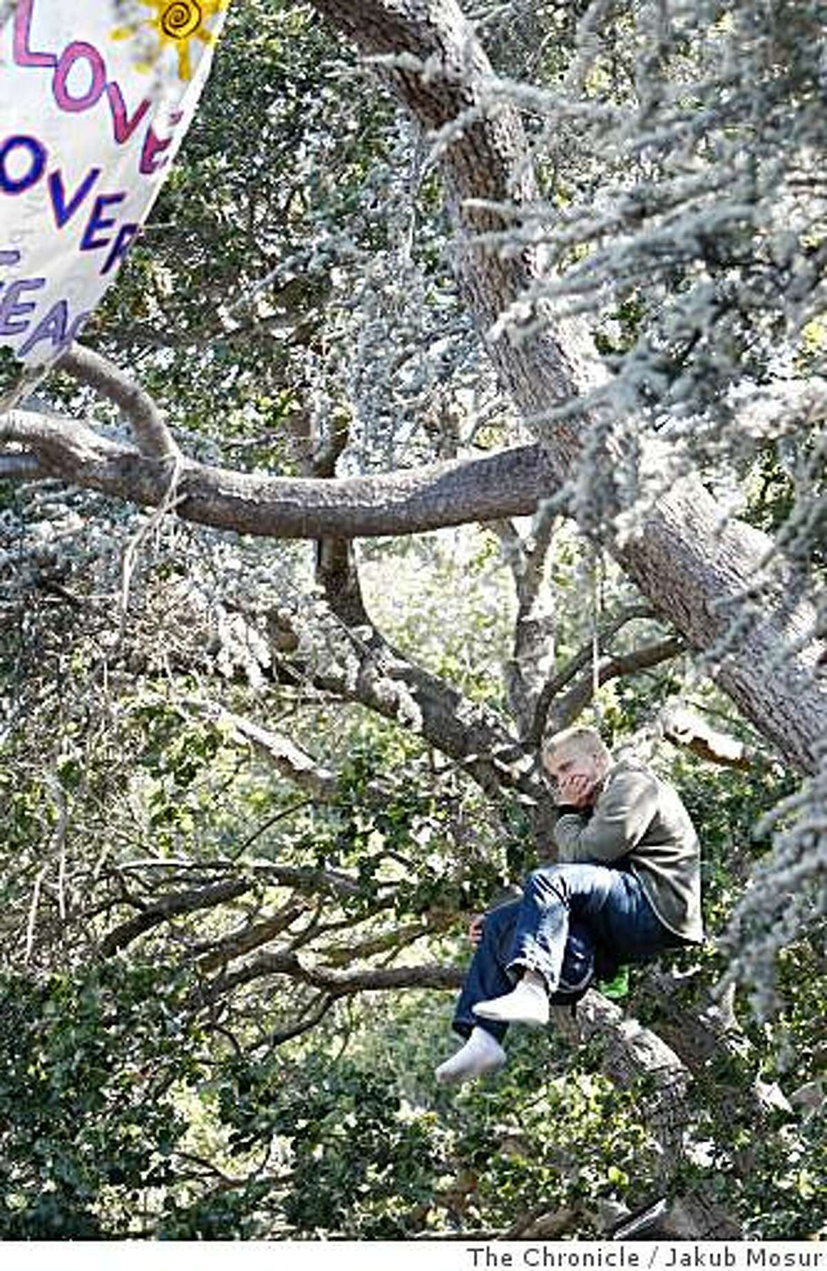 Tree-sitting protesters look on as authorities cut supply lines and removed gear near Memorial Stadium in Berkeley, Calif. on Tuesday, June 17, 2008. Photo by Jakub Mosur / Special to the Chronicle.