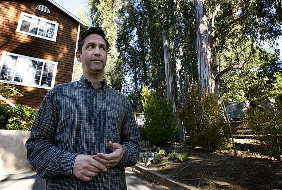 Michael Mindel stands on the driveway of his home in Larkspur, Calif., on Saturday, Nov. 14, 2009. Mindel is in the middle of a dispute with his next door neighbor Anne Wolff over a grove of eucalyptus trees on Wolff's property. A Marin County judge has ordered Wolff to cut down over 25 of the trees that have been determined to be hazardous to Mindel's home (seen at left).