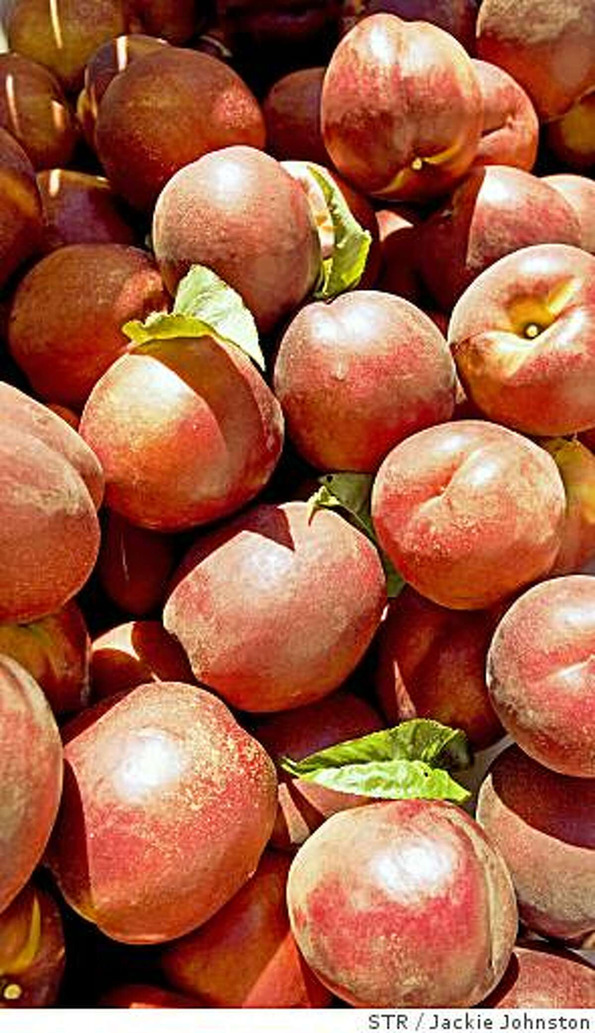 Nectarines await transportation to a packing house from Graystone Orchard in Pasco, Wash., on Thursday, Aug. 16, 2007.