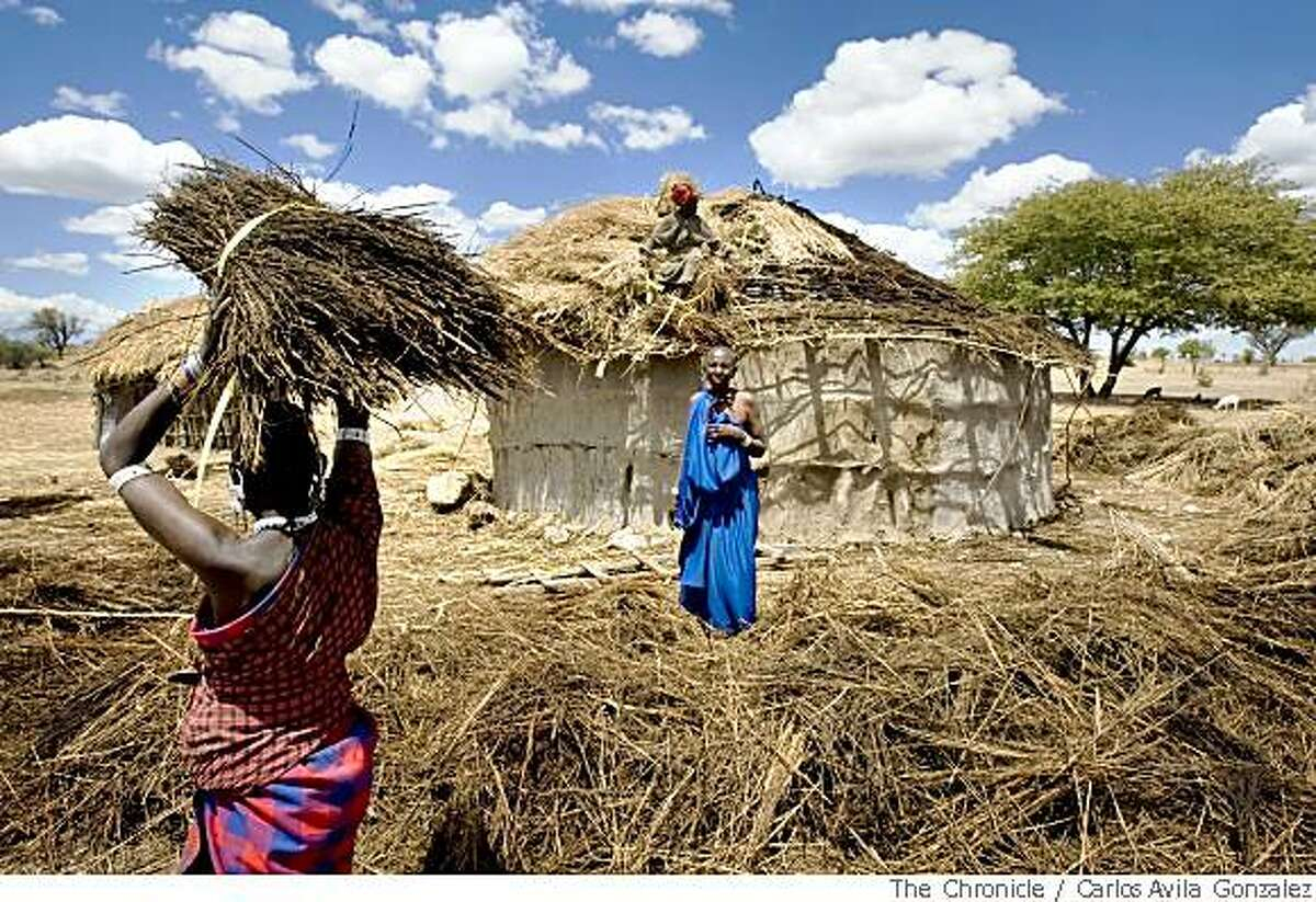 Maasai women tend to re-roofing a hut in their village near Mdori, Tanzania on Thursday, November 1, 2007. Due to isolation and poverty, many of the residents of these Maasai villages are unable to see a doctor, and Dr. Frank Artress is the first white doctor they probably ever seen. Dr. Frank Artress, a former cardiac anesthesiologist from Modesto, Calif., survived a nearly fatal climb on Mount Kilimanjaro nearly five years ago. Since then, he and his wife Susan have returned to Tanzania to heal the people of the country they grew to love and call home. Their work is done for free, through a charitable organization Frank and Susan founded.Photo by Carlos Avila Gonzalez / San Francisco Chronicle