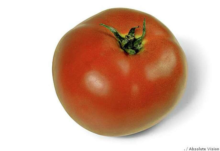 tomato Photo: ., Absolute Vision