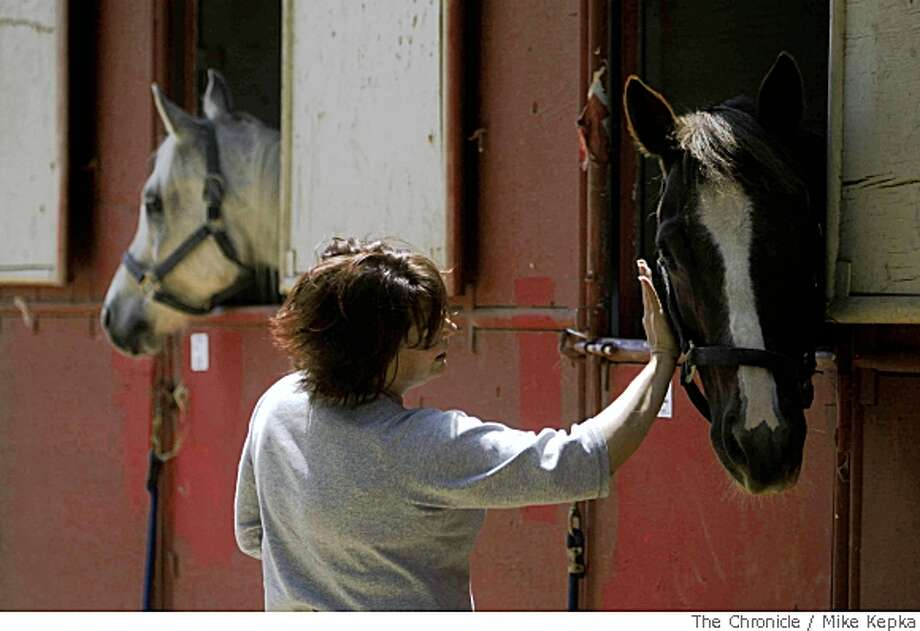 Volunteer Barbara Solera helps take care of dozens of horses at the Santa Cruz County Fairdgrounds on Friday, May 23, in San Watsonville, Calif. Dozens of horses were evacuated Thursday after wild fires came dangerously close.  Photo by Mike Kepka / San Francisco Chronicle Photo: Mike Kepka, SFC