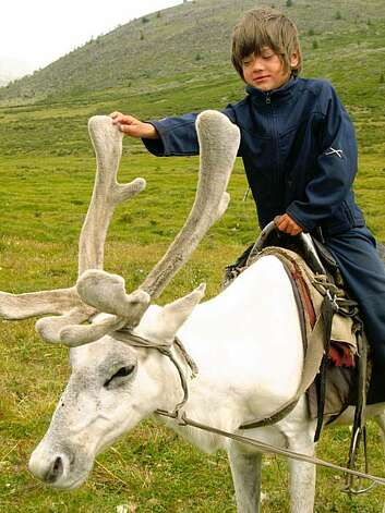 Rowan Isaacson on a reindeer in Mongolia in THE HORSE BOY, a film by Michel Orion Scott and Rupert Isaacson. A Zeitgeist Films release. Photo: Justin Hennard, Zeitgeist Films