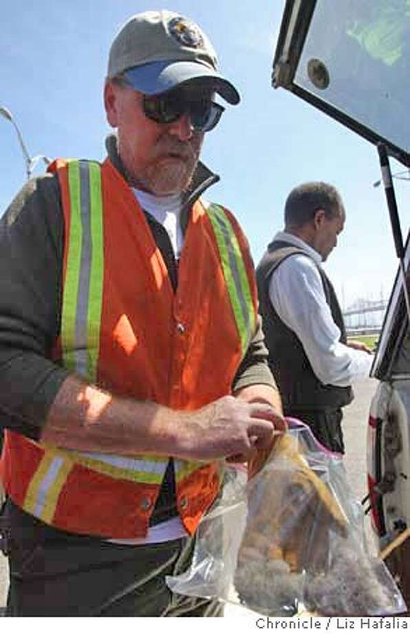 ###Live Caption:Field biologist Brian Latta attempted to rescue peregrine falcon eyases from the Bay Bridge in San Francisco, Calif., on Monday, May 19, 2008. Two three day old eyases were found dead.  Photo by Liz Hafalia / The Chronicle###Caption History:Field biologist Brian Latta attempted to rescue peregrine falcon eyases from the Bay Bridge in San Francisco, Calif., on Monday, May 19, 2008. Two three day old eyases were found dead.  Photo by Liz Hafalia / The Chronicle###Notes:Field biologist Brian Latta with the University of California Santa Cruz Predaory Bird Research Group attempted to rescue peregrine falcon eyases from the Bay Bridge in San Francisco, Calif., on Monday, May 19, 2008. Two three day old eyases were found###Special Instructions:MANDATORY CREDIT FOR PHOTOG AND SF CHRONICLE/NO SALES-MAGS OUT-INTERNET OUT-TV OUT Photo: Liz Hafalia