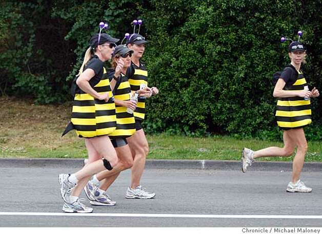 Bumble bees buzz through Golden Gate Park during the 97th annual ING Bay to Breakers 12k foot race in San Francisco, Calif., on May 18, 2008.  Photo by Michael Maloney / San Francisco Chronicle Photo: Michael Maloney