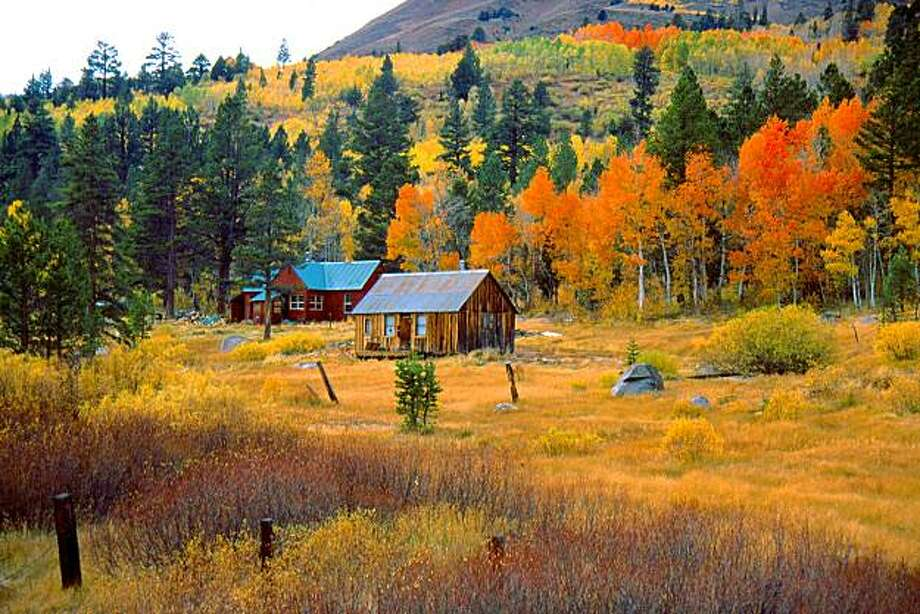 This photo released by the California Travel and Tourism Commission shows aspen trees in Carson Pass and Hope Valley along state 88 south of Tahoe, in California. (AP Photo Dick James)**NO SALES** Photo: Dick James, AP