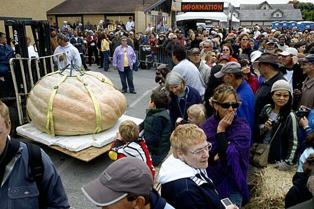 The heaviest pumpkin at the 36th Annual Safeway World Championship Pumpkin Weigh-Off in Half Moon Bay on Monday weighed in at 1,658 pounds. It was grown in Des Moine, Iowa, by Don Young . Photo: Liz Hafalia, The Chronicle