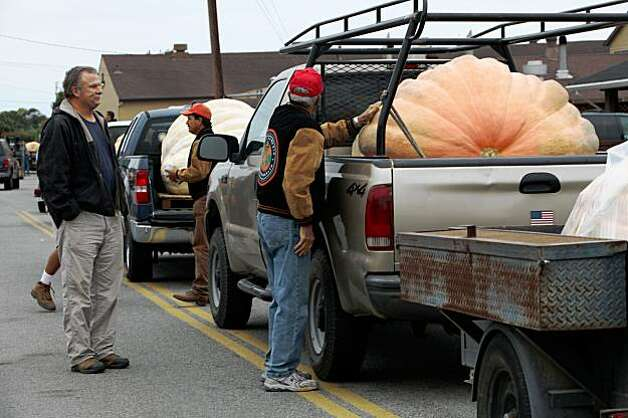 Lining up at the 36th Annual Safeway World Championship Pumpkin Weigh-Off in Half Moon Bay on Monday. Photo: Liz Hafalia, The Chronicle