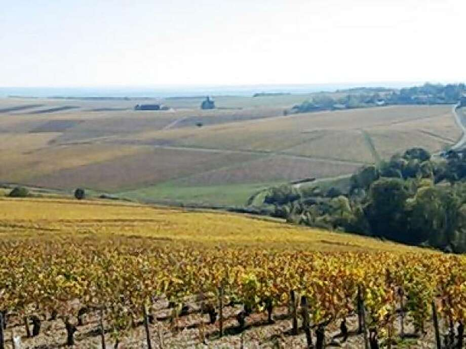 A view of the vineyards in the Chablis growing region of Burgundy. Photo: J.C. SERVANT, BIVB