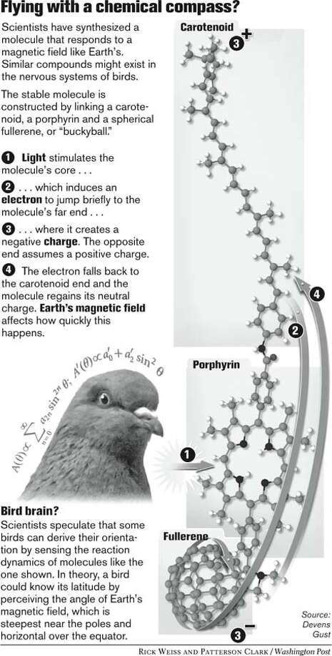 Flying with a chemical compass? Washington Post graphic by Rick Weiss and Patterson Clark